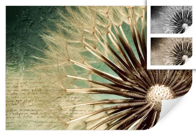 Wallprint W - Pusteblumen-Poesie