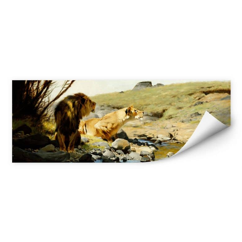 Wallprint W - Kuhnert - Ein Löwe und eine Löwin an einem Bach