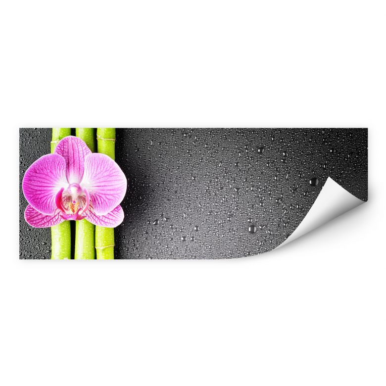 Wallprint W - Orchid and Bamboo - Panorama (horizontal)