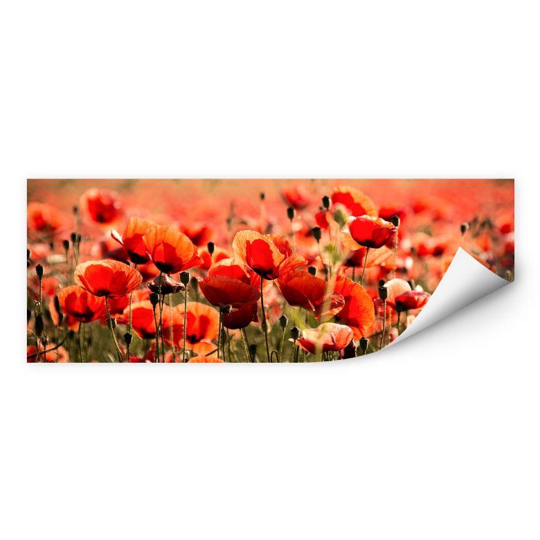 Wallprint Poppy Field - Panorama