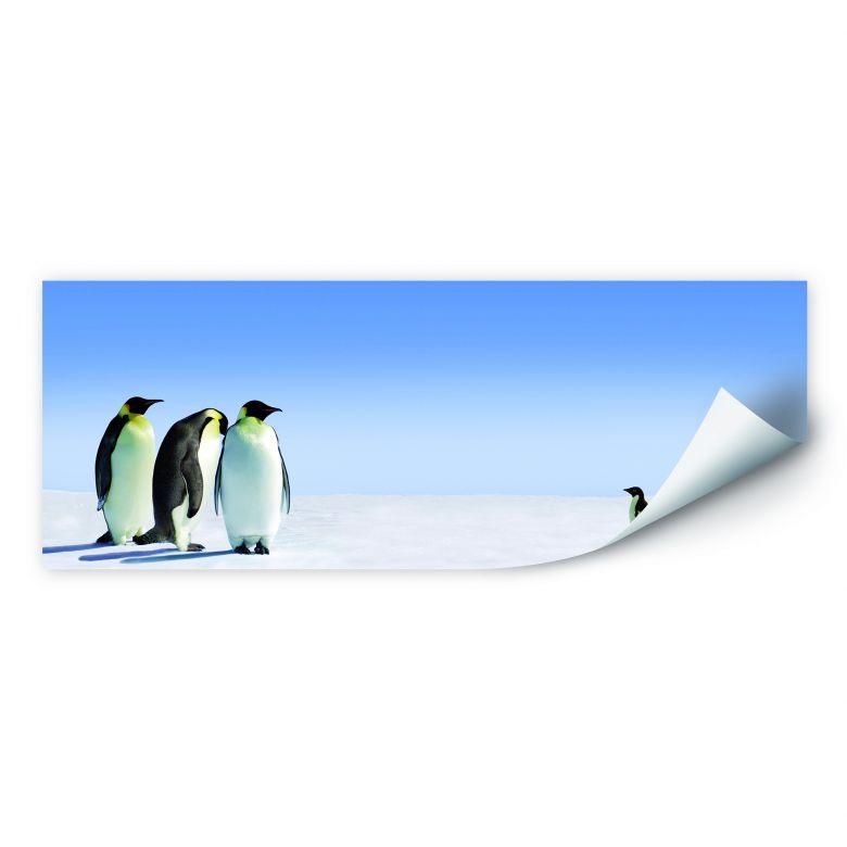 Wallprint W - Penguin - Panorama