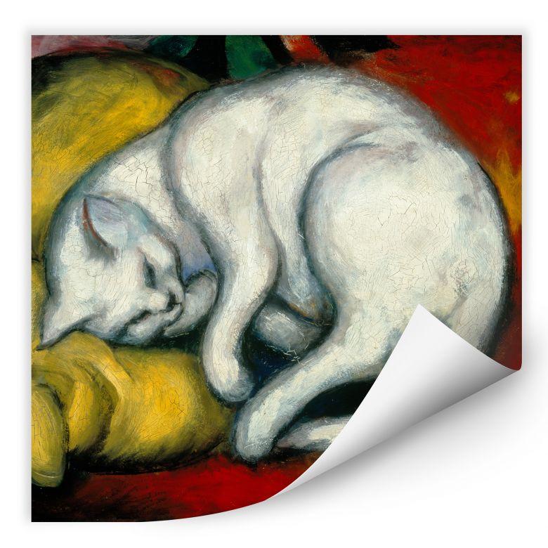 Wallprint W - Marc - Die weiße Katze - quadratisch