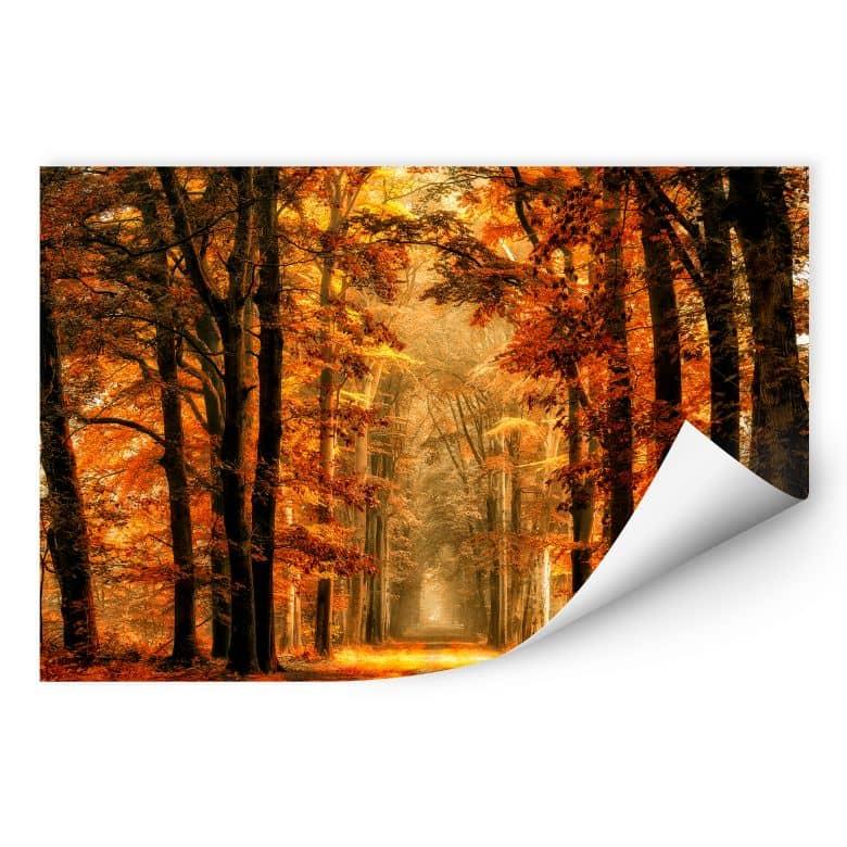 Wallprint van de Goor - Herbstallee