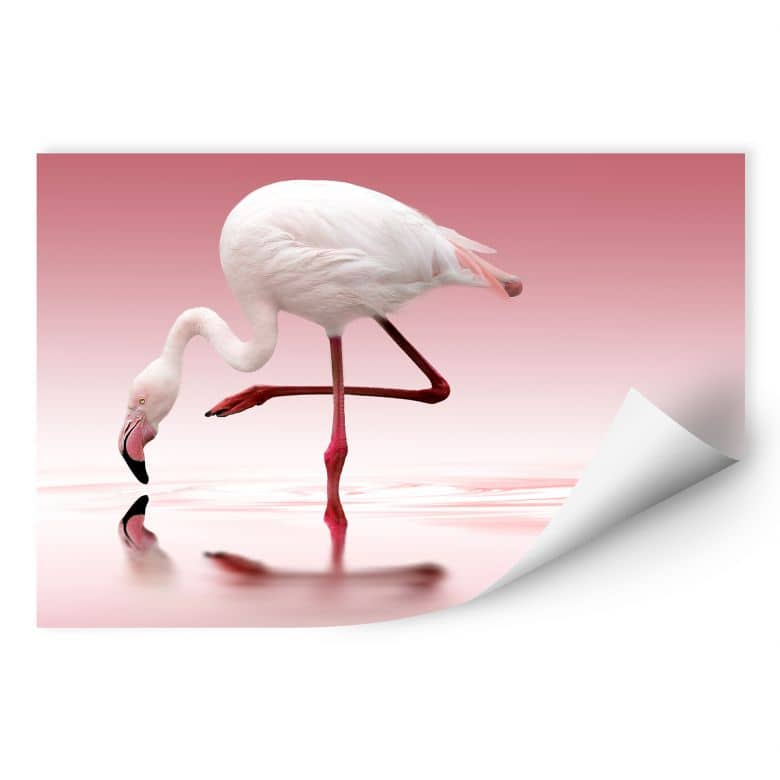 Wallprint Reindl - Pink Flamingo