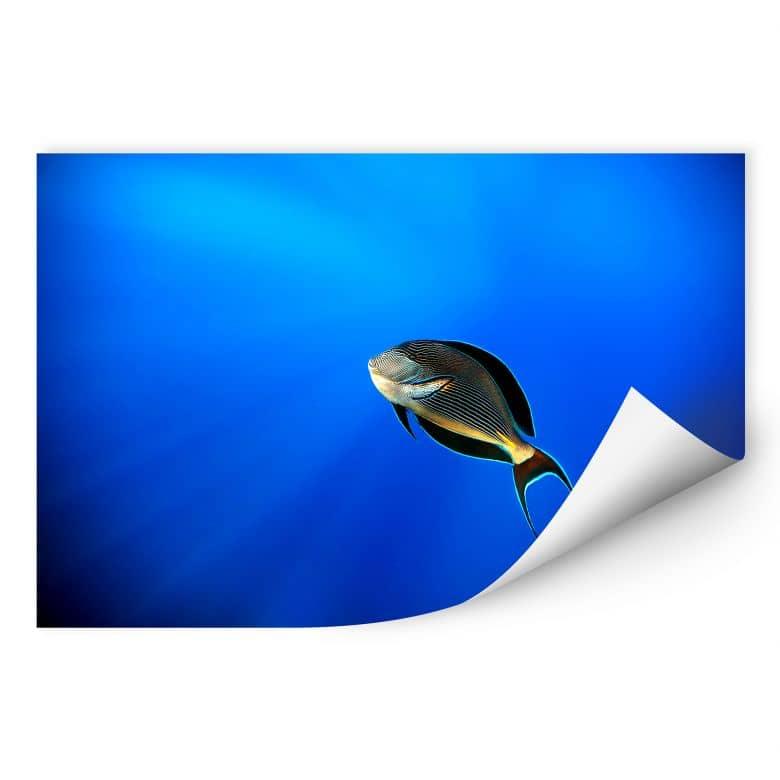 Wallprint Catta - Deep Ocean