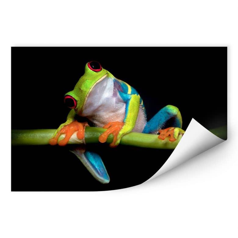 Wallprint Valverde - Green Frog