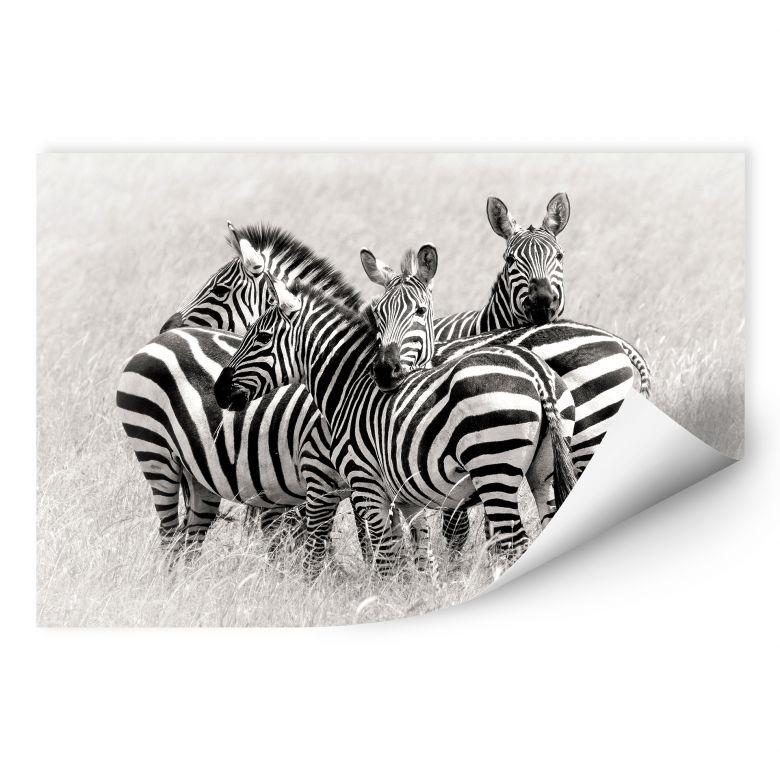 Wallprint Trubitsyn - Zebras in der Savanne
