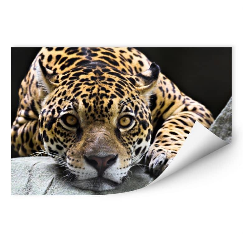 Muurprints Jaguar