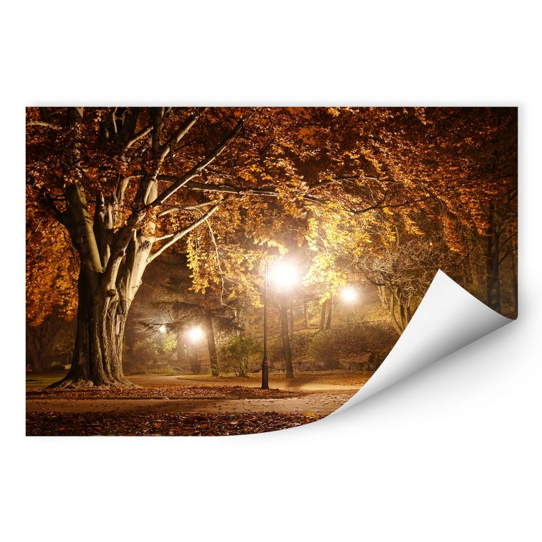 Wallprint W - Herbst im Park