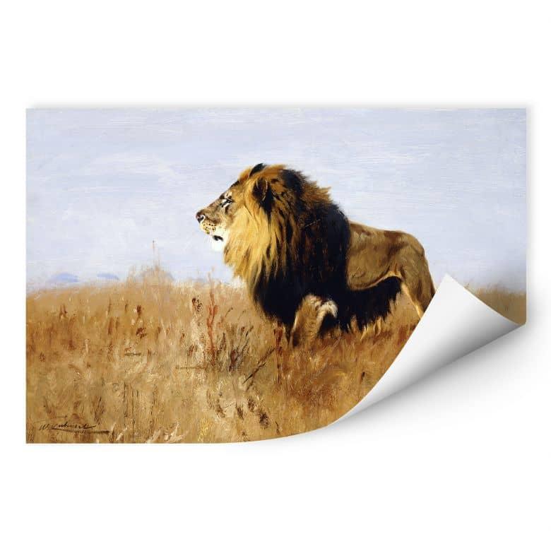 Wallprint W - Kuhnert - Löwe auf der Suche nach Beute