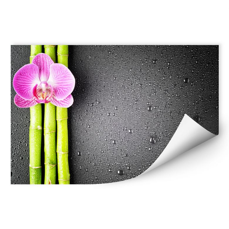 Wallprint W - Orchid and Bamboo