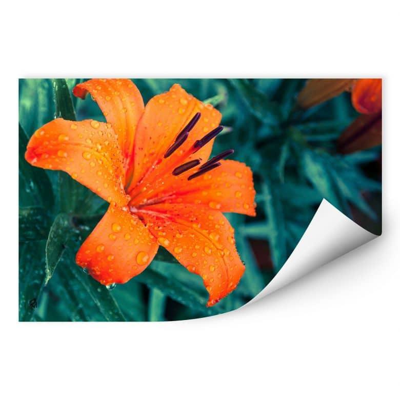 Wallprint Tropical Lily