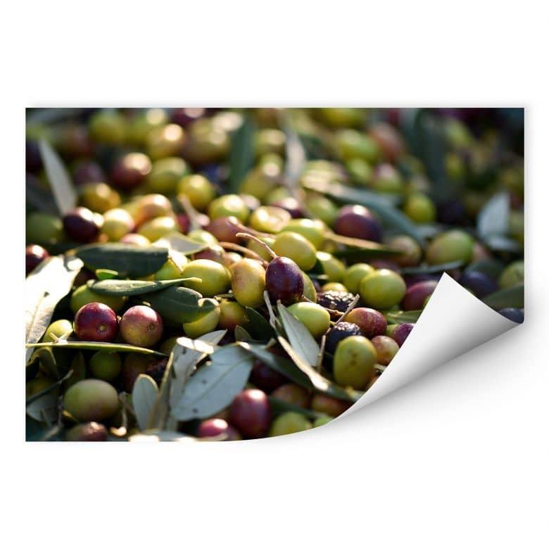 Wallprint Mediterrane Oliven