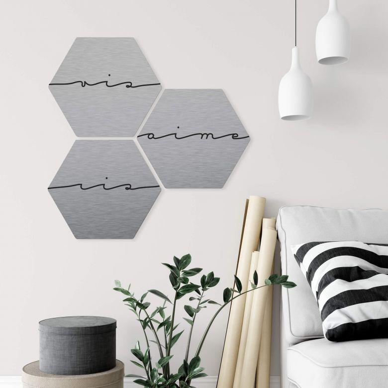 Hexagon - Alu-Dibond-Silbereffekt - Vis ris aime (3er Set)