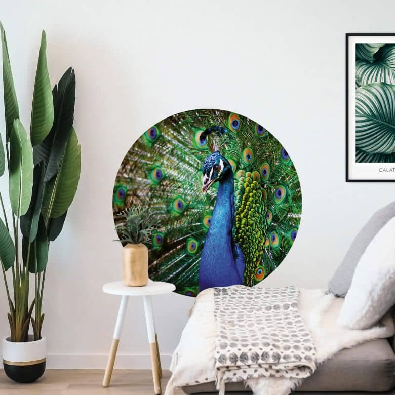 Sticker mural Magnifique paon - Rond
