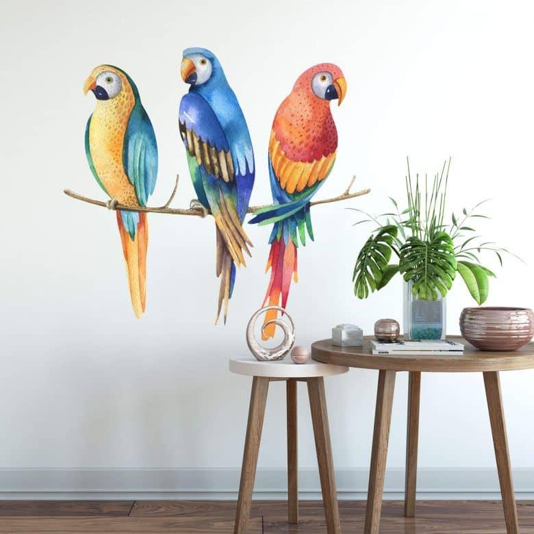 Wall sticker Kvilis – Three Parrots