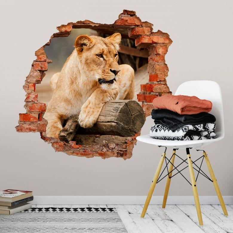 3D wall sticker African Lion