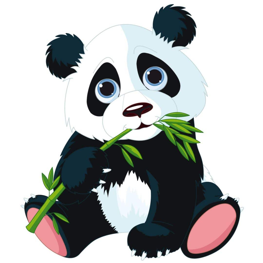 Nibbling Panda Wall Sticker Wall Art Com