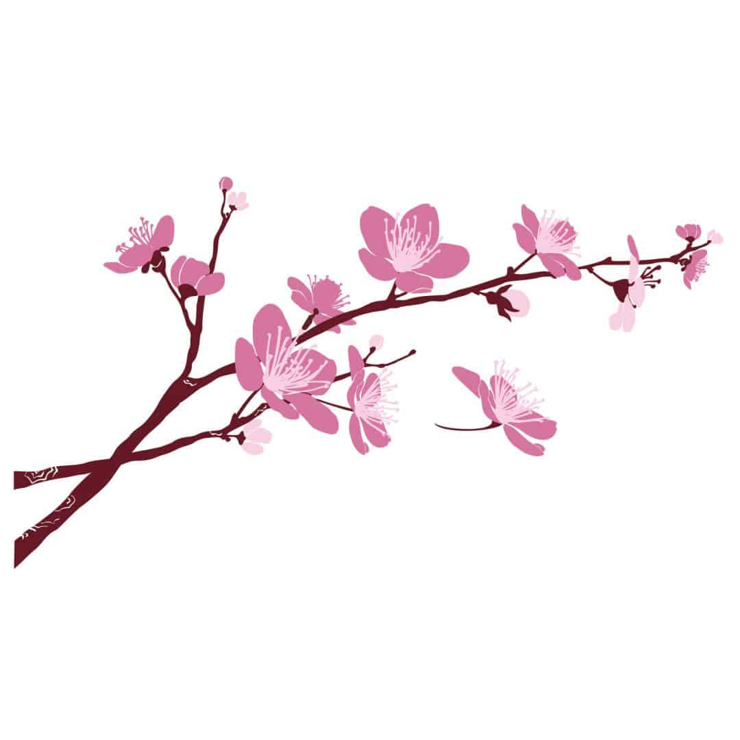 Cherry Blossoms 03 Wall Sticker Wall Art Com