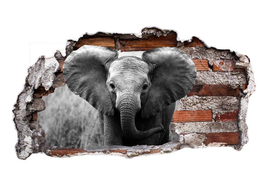 3d wandtattoo jumbo der kleine elefant wall. Black Bedroom Furniture Sets. Home Design Ideas