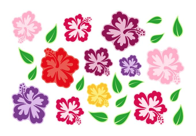 Adesivi per finestre fiori di ibisco wall - Adesivi per finestre ...