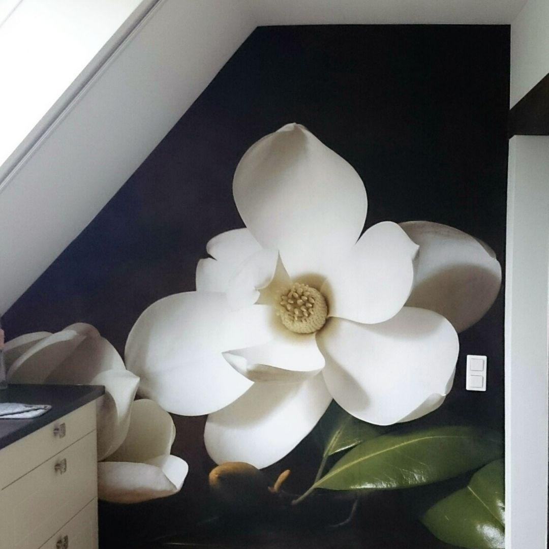 fototapete magnolienzweig mit bl ttern von k l wall art wall. Black Bedroom Furniture Sets. Home Design Ideas