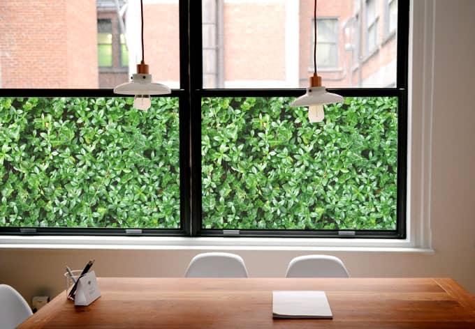 Pellicola adesiva per vetri il pollice verde panoramica for Pellicola adesiva per vetri ikea