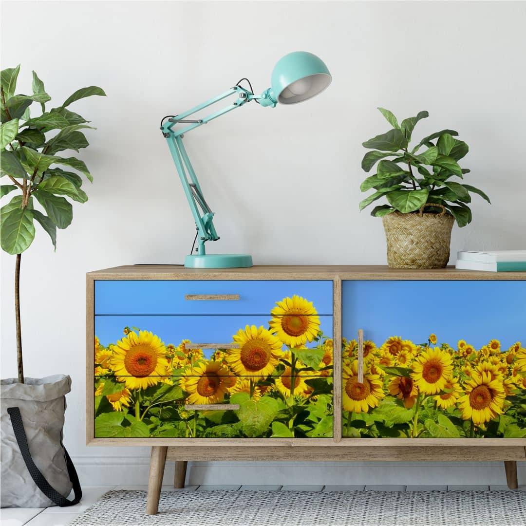 selbstklebendes wallprint sonnenblumenfeld im panorama format exklusiv bei k l wall art. Black Bedroom Furniture Sets. Home Design Ideas