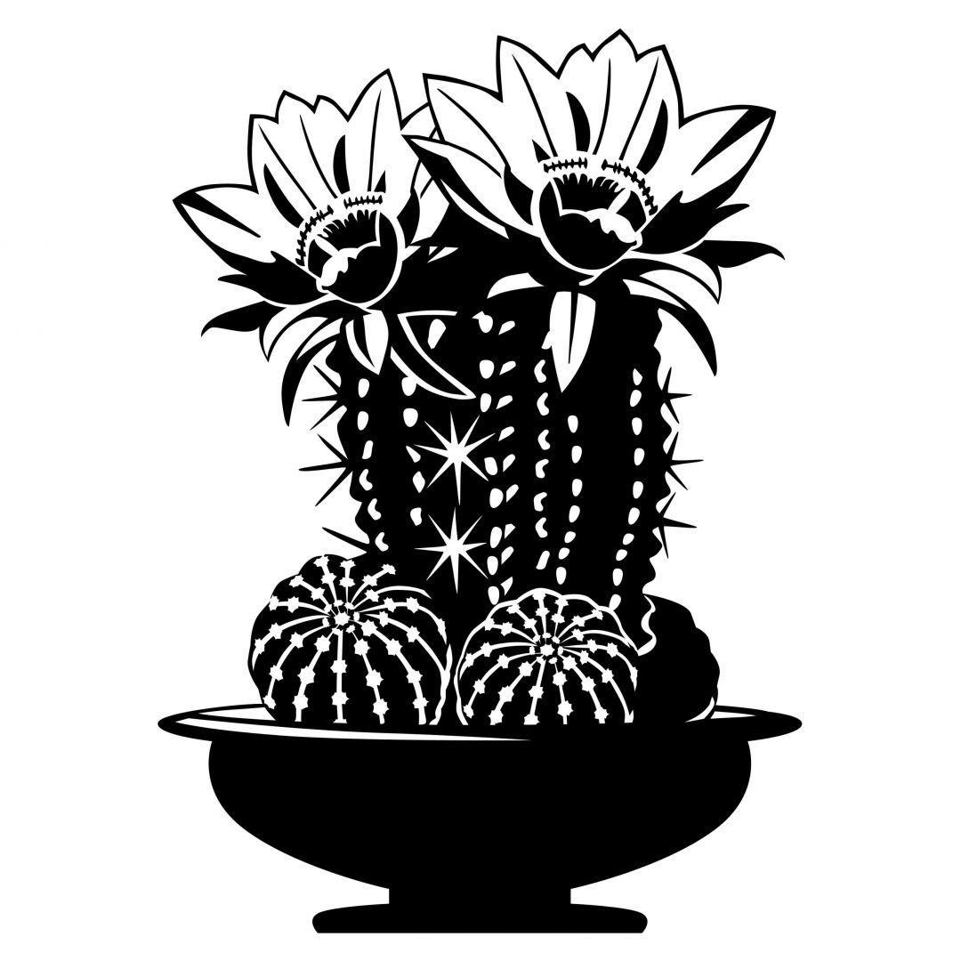 wandtattoo kaktus 1 der nicht piekt wall. Black Bedroom Furniture Sets. Home Design Ideas