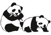 Wandtattoo Panda-Bären