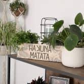 Targa in legno - Hakuna Matata
