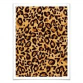 Poster Leopard - Muster