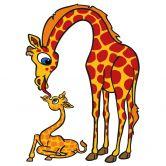 Sticker mural - Girafe et Girafon