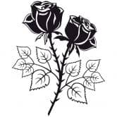 Wandtattoo Zwei Rosen
