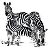 Wandtattoo Zebras 2