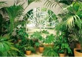 Winter Garden - Photo Wallpaper