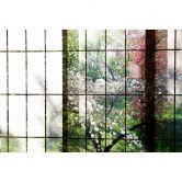 Livingwalls Fototapete Walls by Patel 2 orchard 2