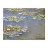 Fotopuzzle Monet - Seerosen 1905