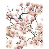 Fototapete Kadam - Flora Magnolia - 192x260 cm