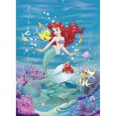 Fototapete Disney Arielle singt