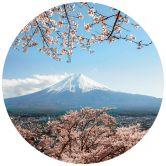 Fototapete Colombo - Mount Fuji in Japan - Rund