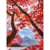 Fototapete Samejima - Rote Blätter - 192x260 cm