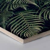 Hexagon wood - Fern 02