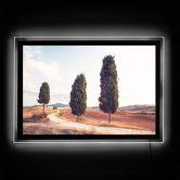 LED-Wandbild Colombo - Drei Zypressen am Weg