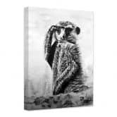 Leinwandbild Toetzke - Aufmerksames Erdmännchen