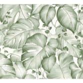 Carta da parati Colibri – Giungla verde