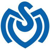 Wandtattoo MSV Duisburg Retro Logo