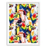 Poster mit Bilderrahmen Tropical Birds