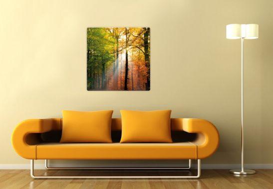 glasbild goldener herbst herbstdeko als wandbild wall. Black Bedroom Furniture Sets. Home Design Ideas