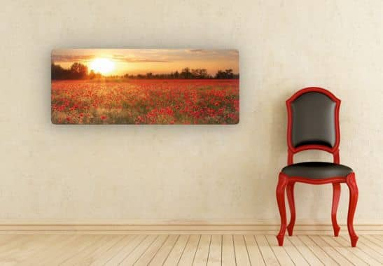 glasbild mohnfeld im sonnenuntergang panorama wall. Black Bedroom Furniture Sets. Home Design Ideas